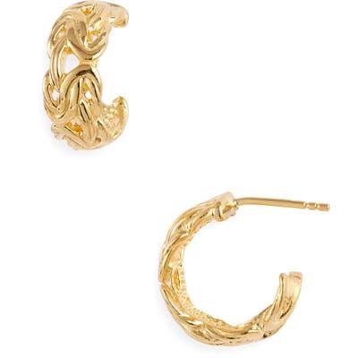 Argento Vivo Aurelia Hoop Earrings