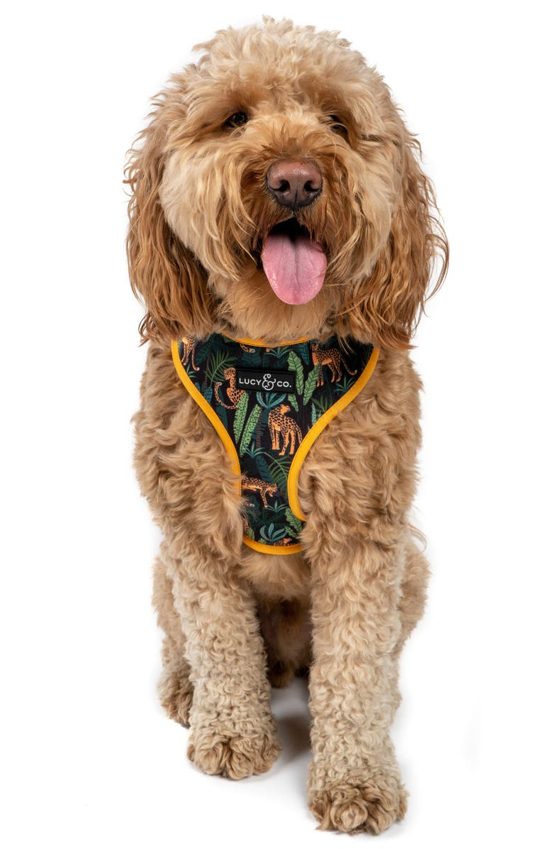 LUCY AND CO Lucy & Co. The Jungle Vibes Reversible Dog Harness, Main, color, JUNGLE VIBES