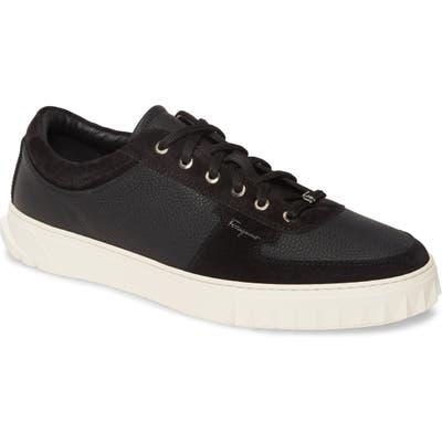 Salvatore Ferragamo Scuby Sneaker
