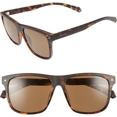 Polaroid Eyewear Flat Top 5m Polarized Sunglasses - Havana