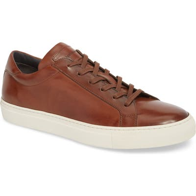 To Boot New York Knox Low Top Sneaker, Brown