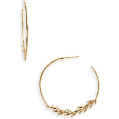Gorjana Willow Hoop Earrings