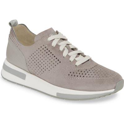 Paul Green Ariane Sneaker - Grey