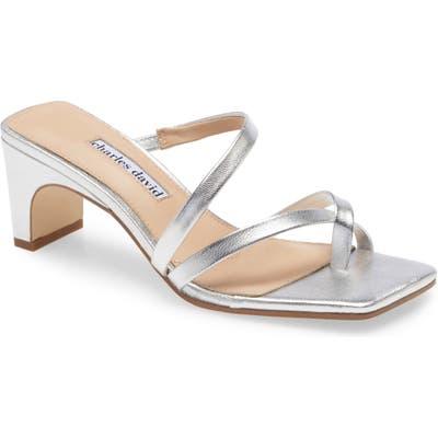 Charles David Henry Slide Sandal- Metallic