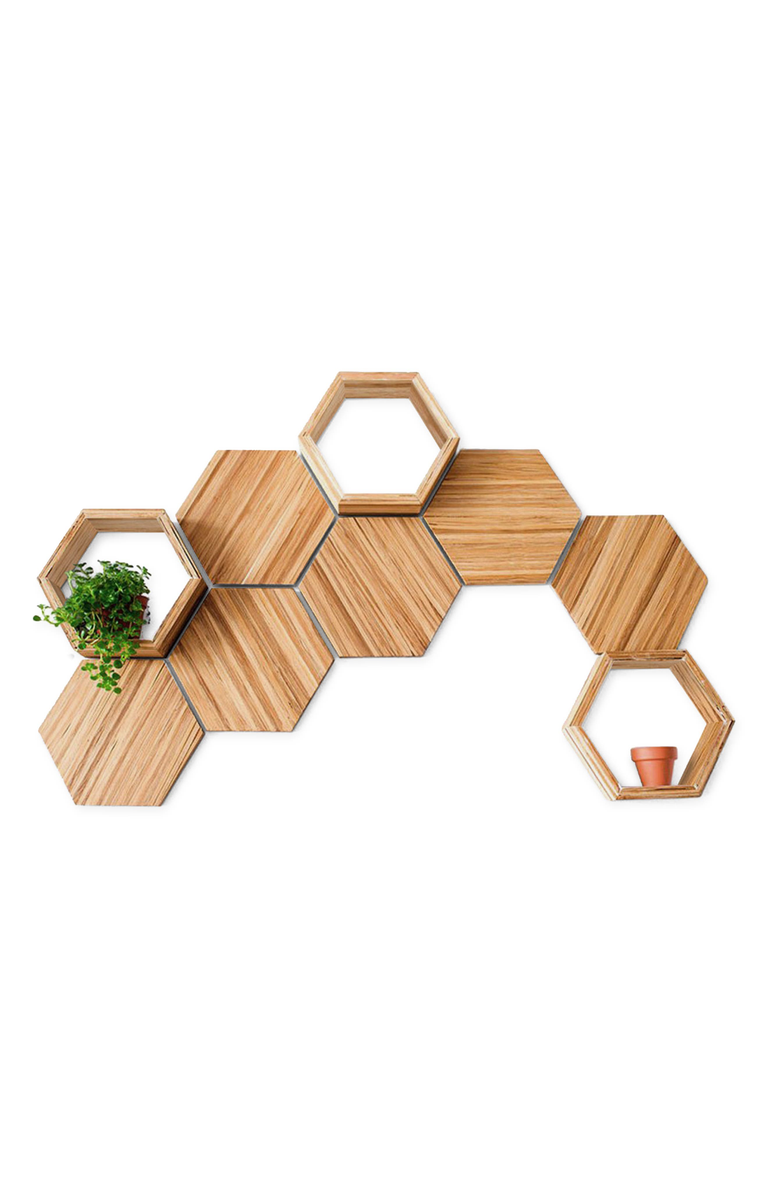 Create your own eye-catching wall decor with this set of nine modular recycled-wood hexagonal pieces, perfect for showing off small plants. Style Name: Chopvalue 9-Piece Wall Decor Set. Style Number: 6137636. Available in stores.
