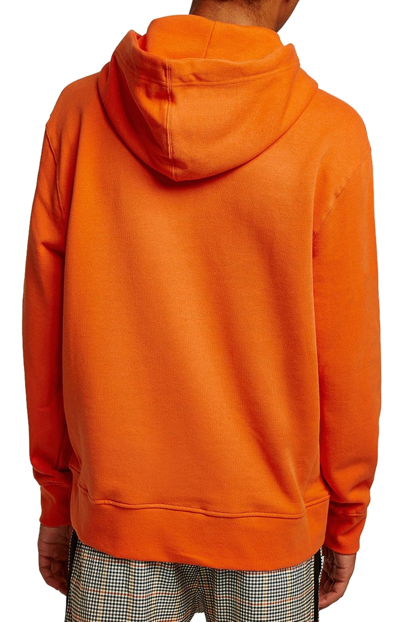 ,                             Hoodie,                             Alternate thumbnail 75, color,                             800