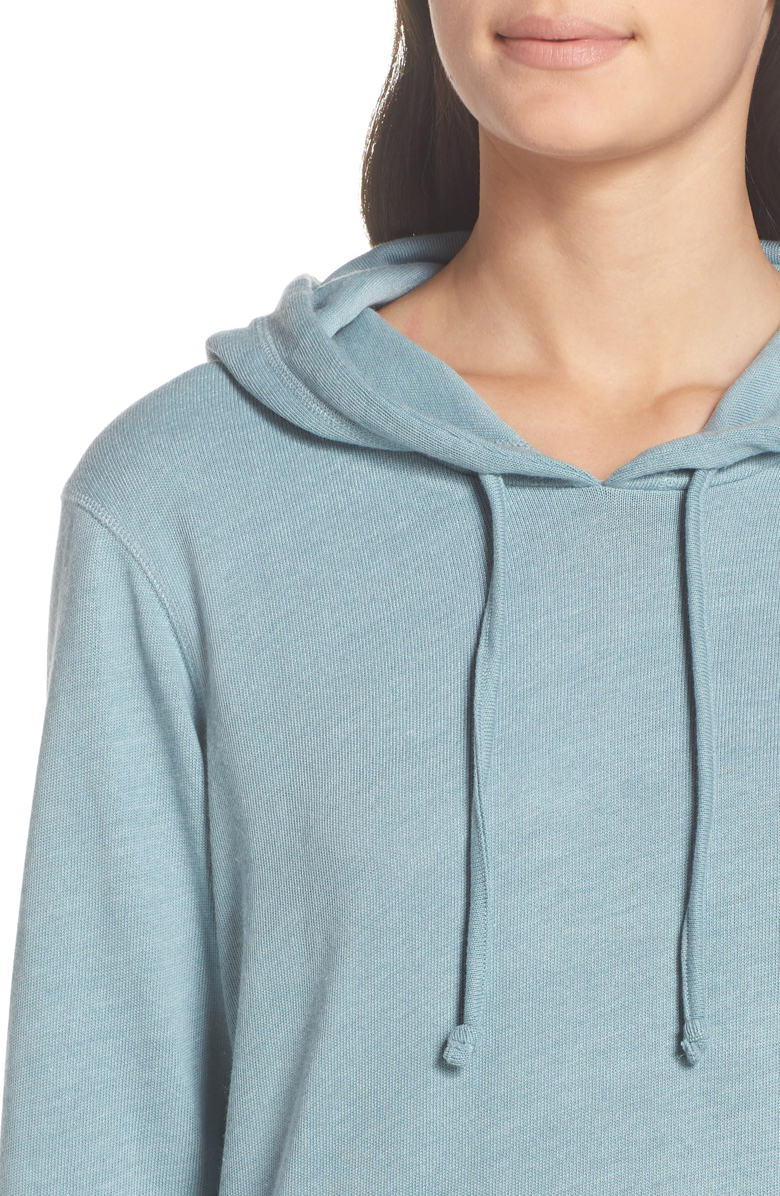 ,                             Cozy Pullover Hoodie,                             Alternate thumbnail 18, color,                             400