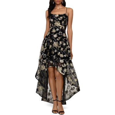 Xscape Embroidered Lace High/low Gown, Black
