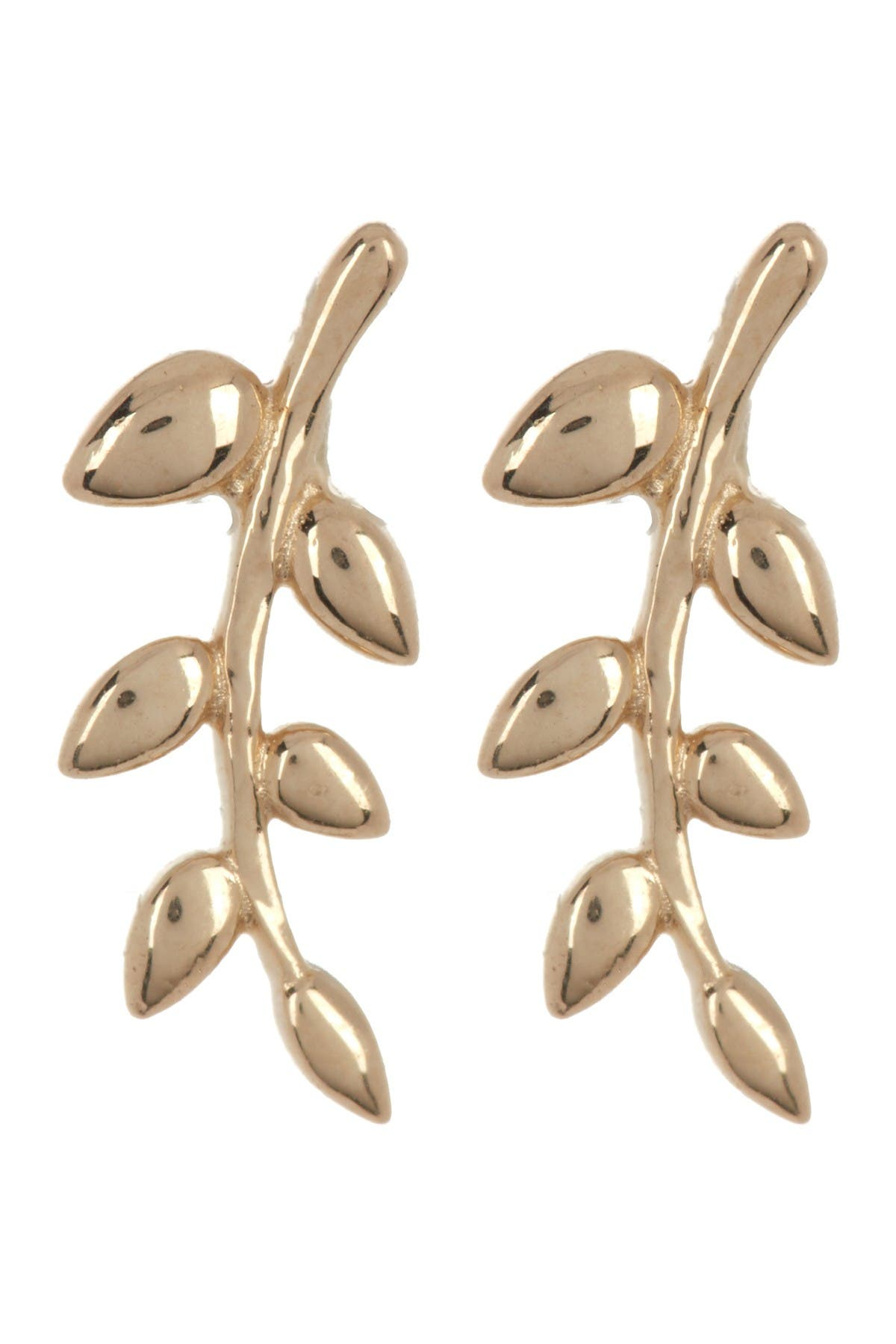 Image of Candela 10K Yellow Gold Olive Branch Earrings