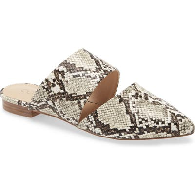 Coconuts By Matisse Shay Mule- White