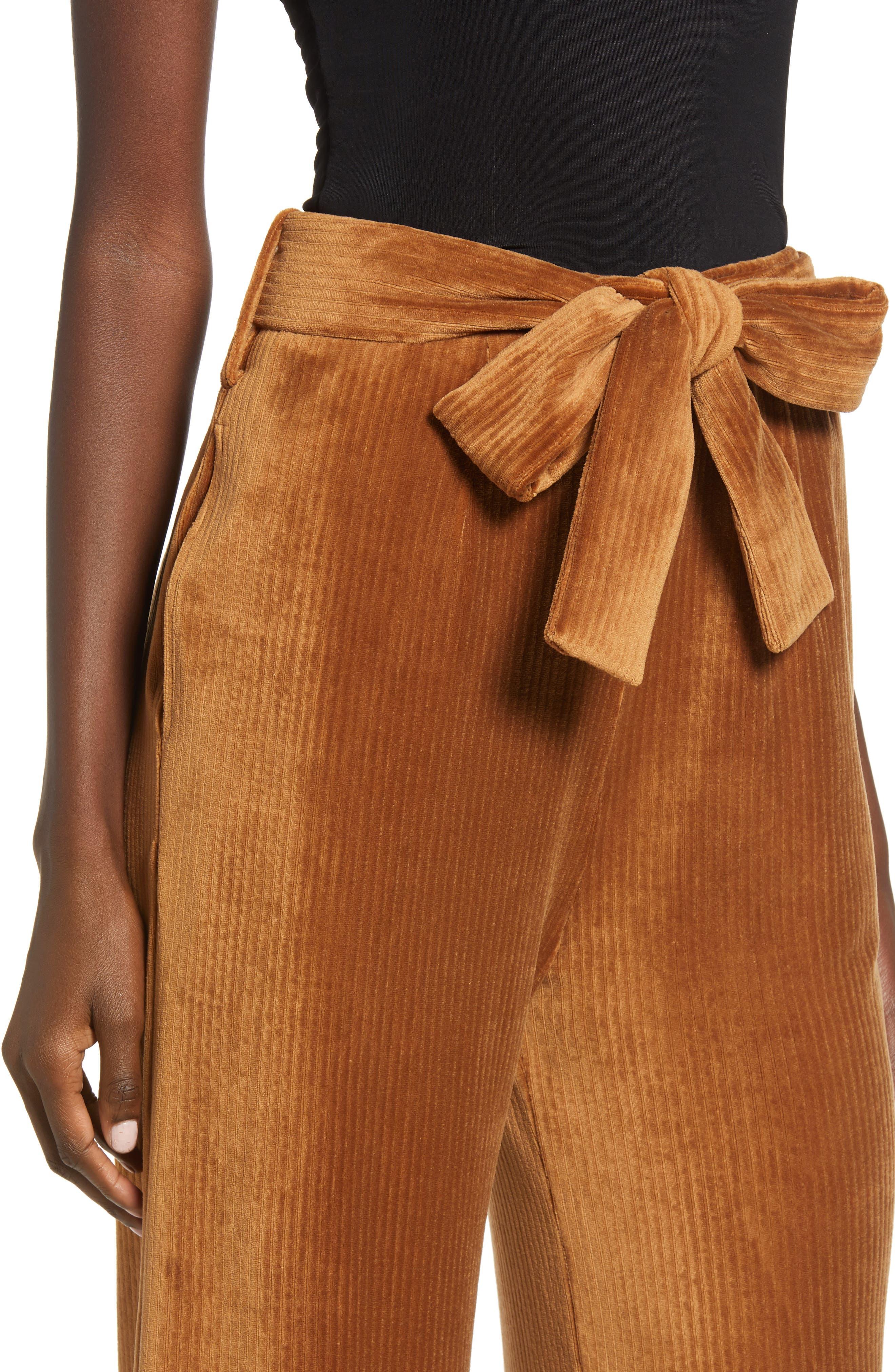 ,                             Velour Tie Waist Pants,                             Alternate thumbnail 4, color,                             200