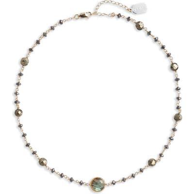 Ela Rae Diana Semiprecious Stone Coin Necklace