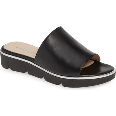 Patricia Green Callie Slide Sandal, Black