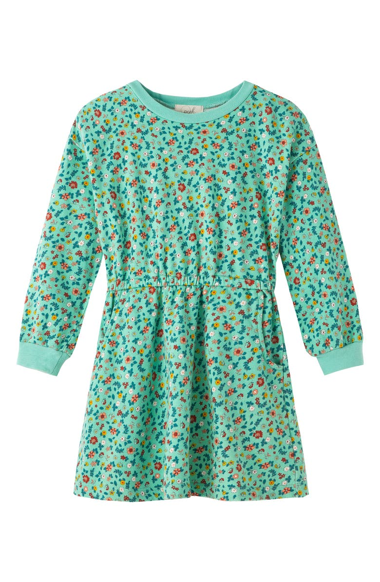PEEK AREN'T YOU CURIOUS Floral Long Sleeve French Terry Dress, Main, color, PRINT