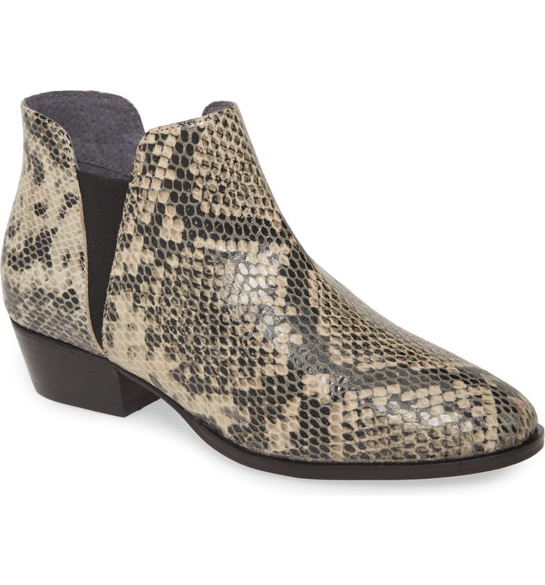 SEYCHELLES Waiting for You Bootie, Main, color, BLACK/ WHITE SNAKE PRINT