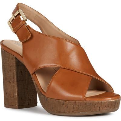 Geox Gerbera Sandal, Brown