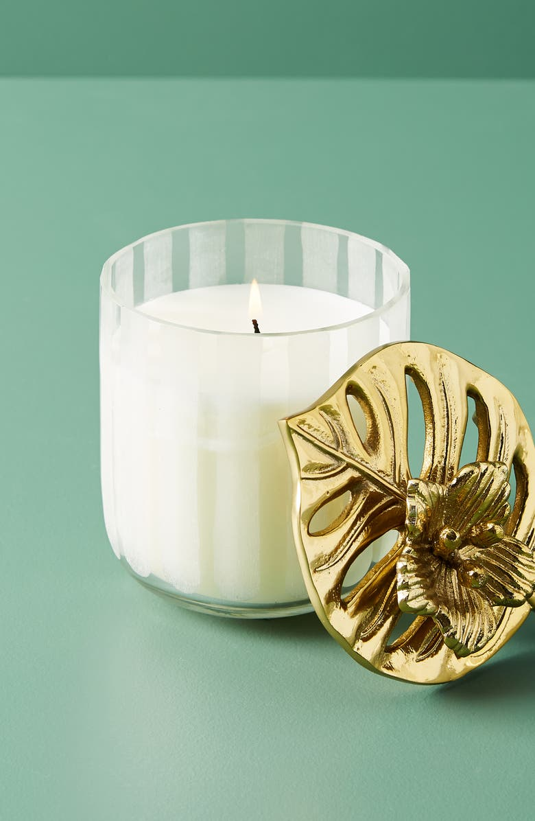 ANTHROPOLOGIE Large Pacifica Candle, Main, color, 000