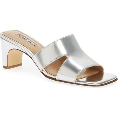Charles David Harley Slide Sandal- Metallic
