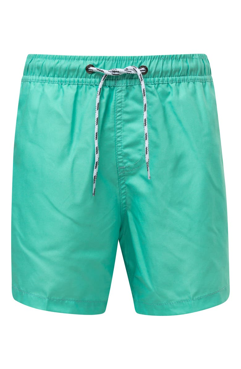 SNAPPER ROCK Mint Hybrid Swim Trunks, Main, color, LIGHT PASTEL GREEN