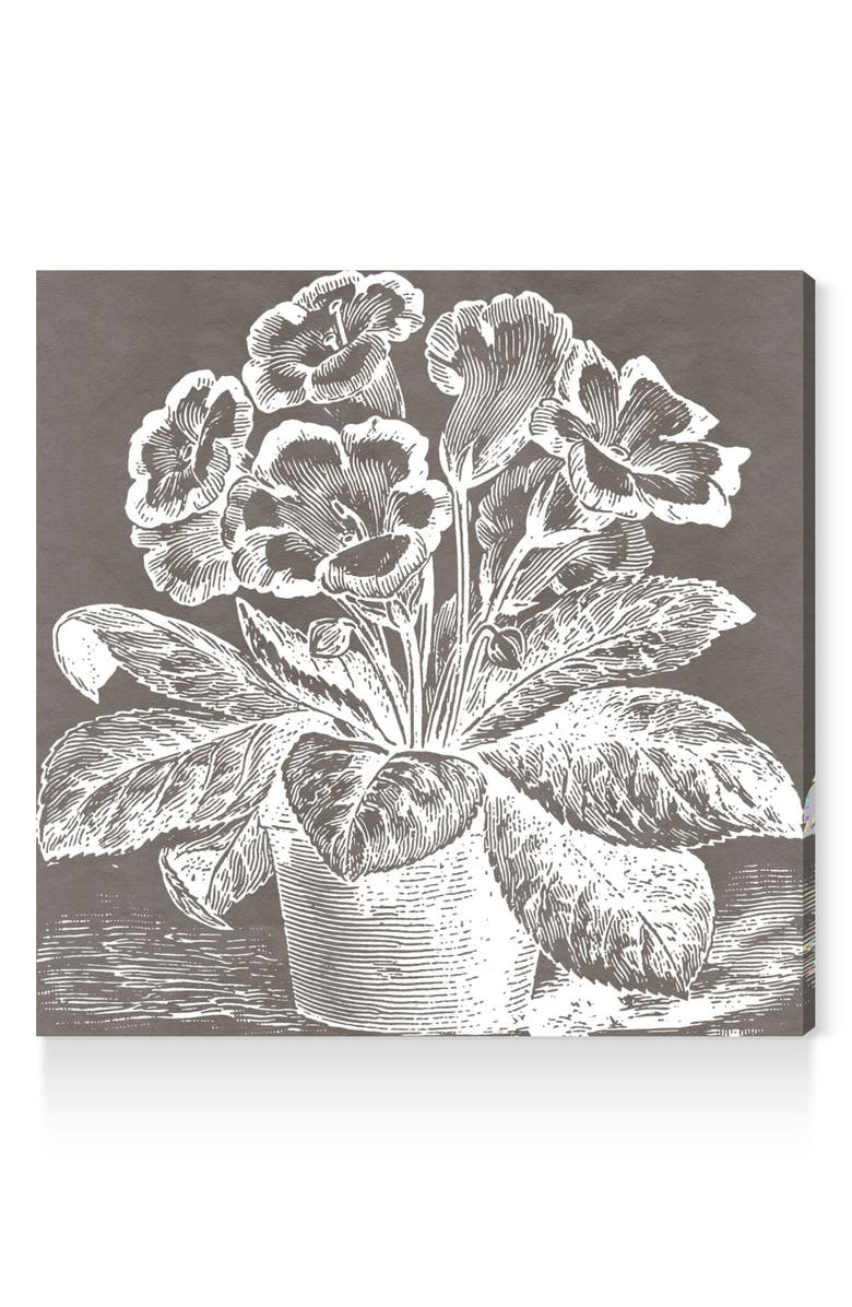 OLIVER GAL Potted Primrose Canvas Wall Art, Main, color, GREY