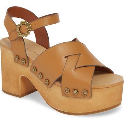 Coach Nessa Clog Platform Sandal