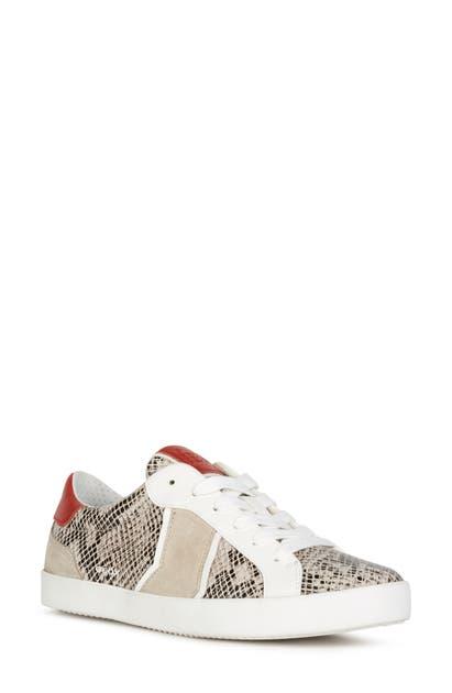 Geox Sneakers WARLEY SNEAKER