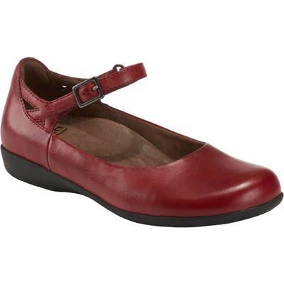 Earth Alder 2 Dalma Ankle Strap Shoe, Burgundy