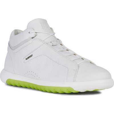 Geox Nexside 3 High Top Sneaker, White