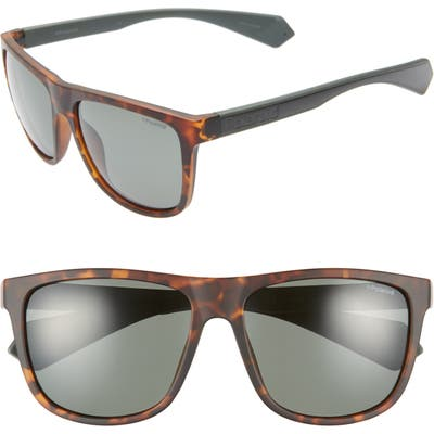Polaroid Plastic Core 57Mm Polarized Sunglasses - Havana