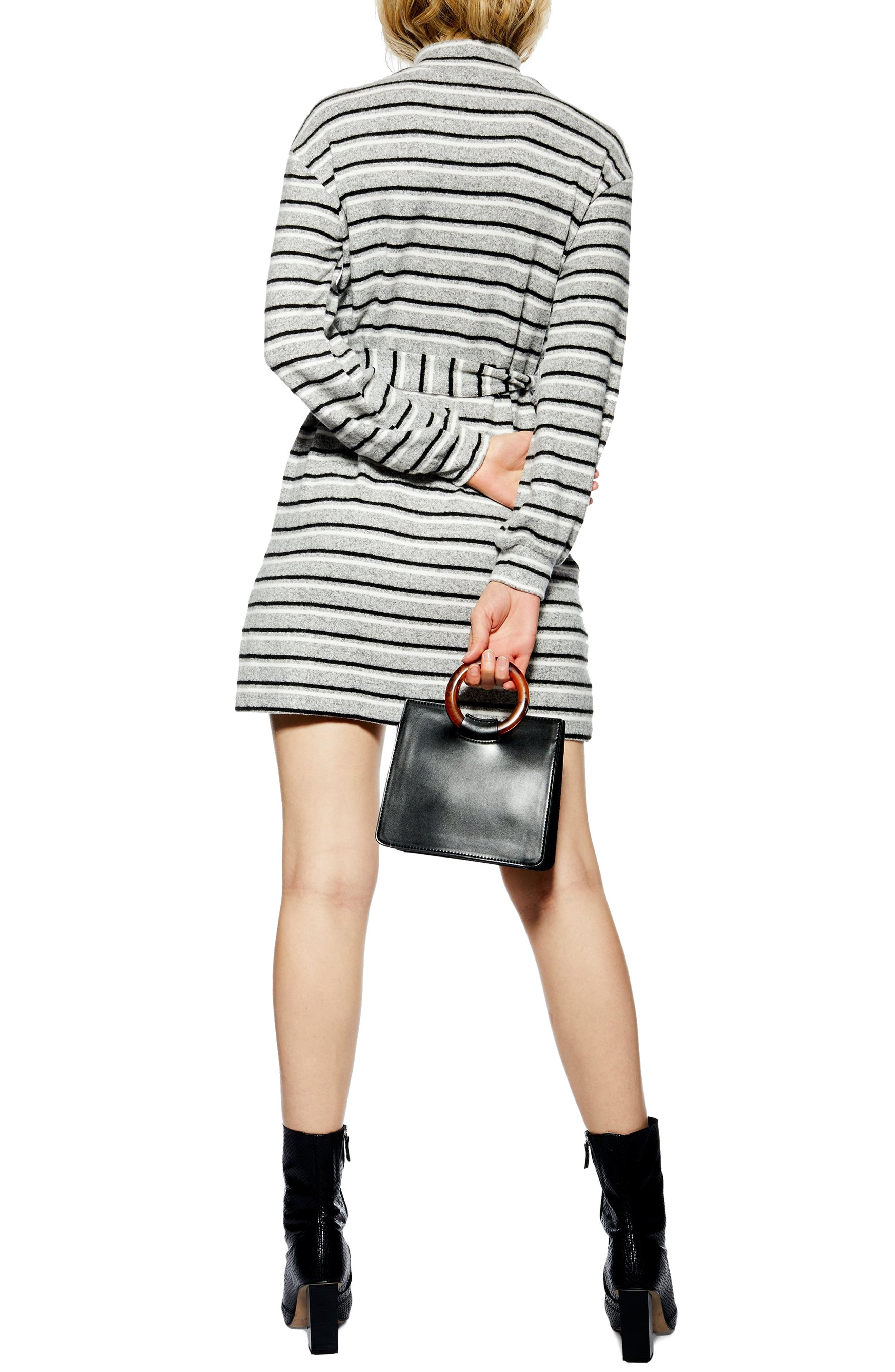 ,                             Stripe Belt Minidress,                             Alternate thumbnail 2, color,                             020