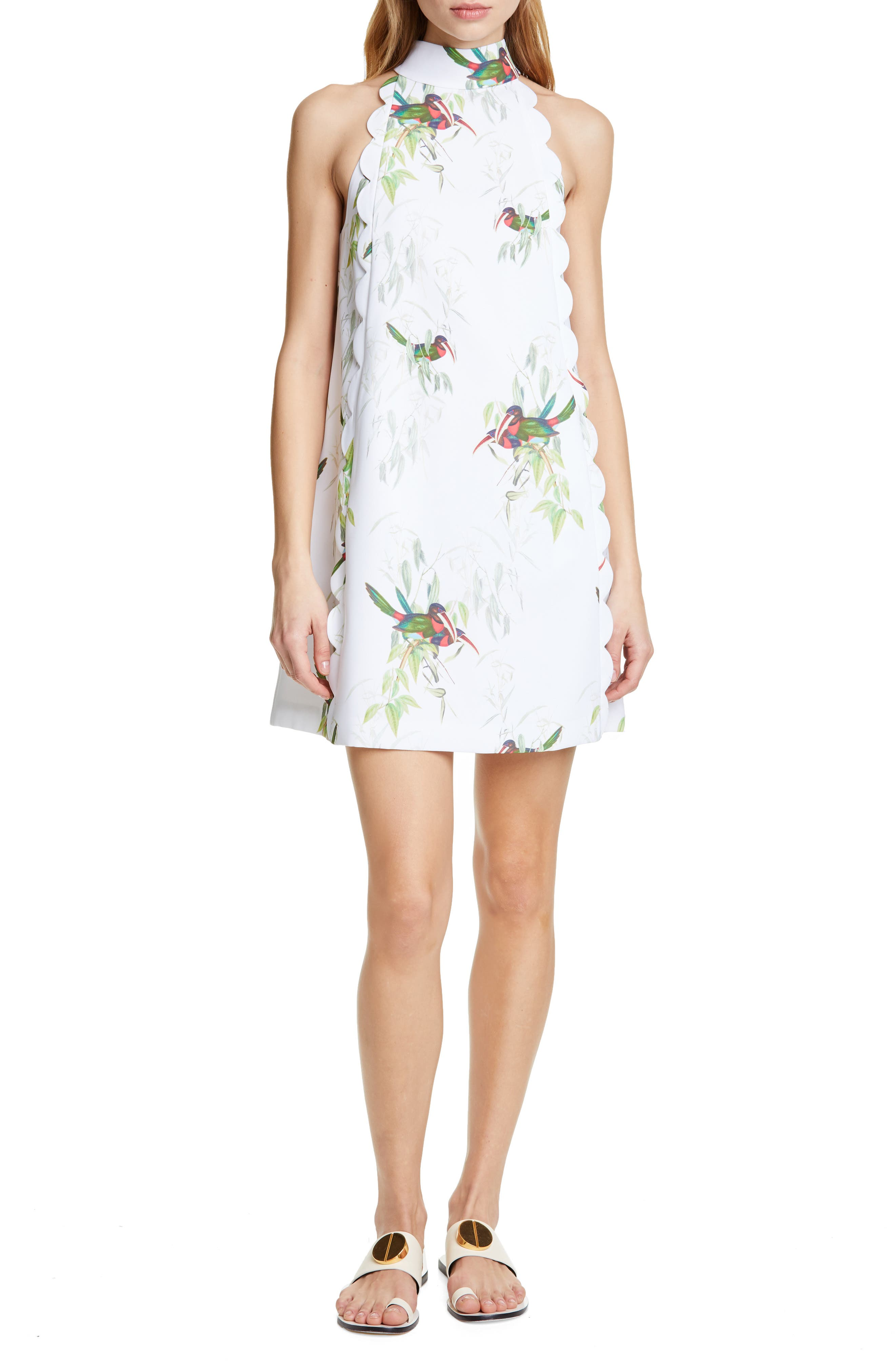 Ted Baker London Toriat Tutti Frutti Scallop Trim Dress, White
