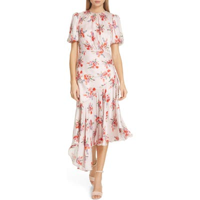 Amur Bettina Floral Print Asymmetrical Dress, Pink