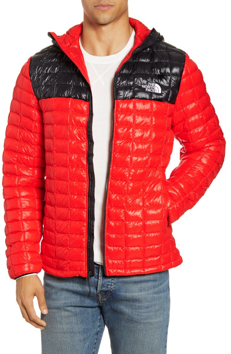 THE NORTH FACE ThermoBall<sup>™</sup> Eco Hooded Parka, Main, color, 800
