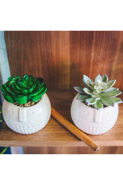 Image of FLORA BUNDA Faux Succulent Ceramic Pot - Set of 2