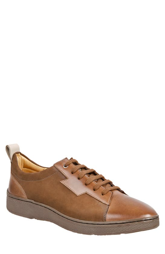 Sandro Moscoloni Wally Leather Lace-up Sneaker In Tan