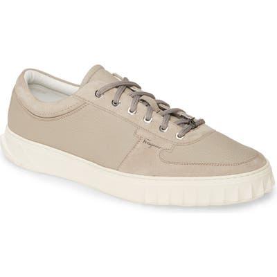 Salvatore Ferragamo Scuby Sneaker, Grey