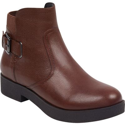 Evolve Xena Boot- Brown