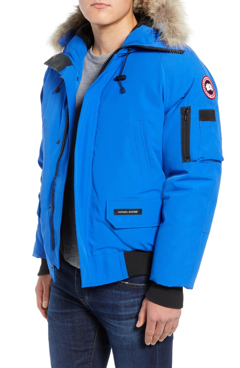 CANADA GOOSE PBI Chilliwack Down Bomber Jacket with Genuine Coyote Trim, Main, color, ROYAL PBI BLUE