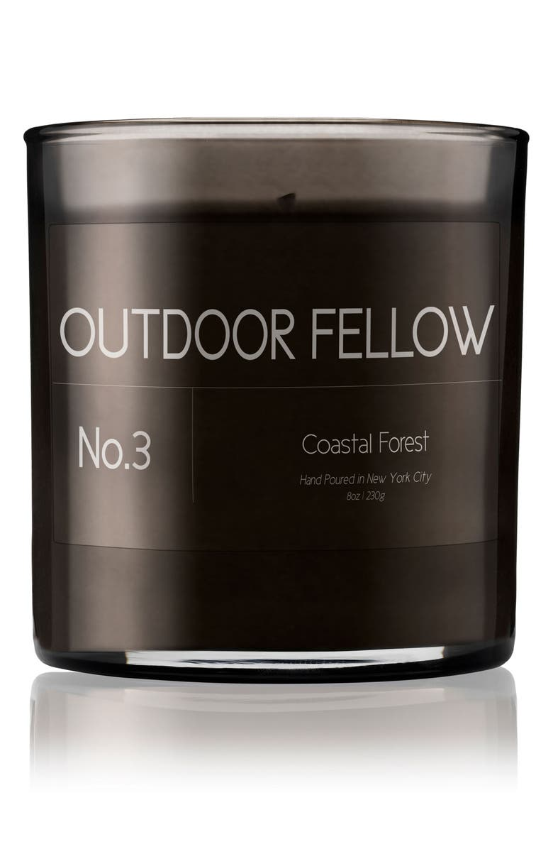 OUTDOOR FELLOW No. 3 Coastal Forest Scented Candle, Main, color, 100