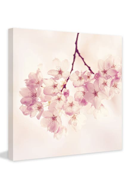 "Image of Marmont Hill Inc. Cherry Blossoms Painting Print on Wrapped Canvas - 32"" x 32"""