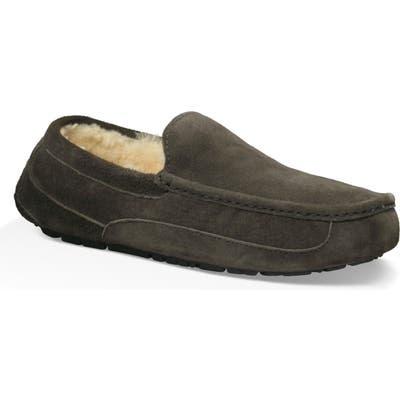 Ugg Ascot Slipper, Grey