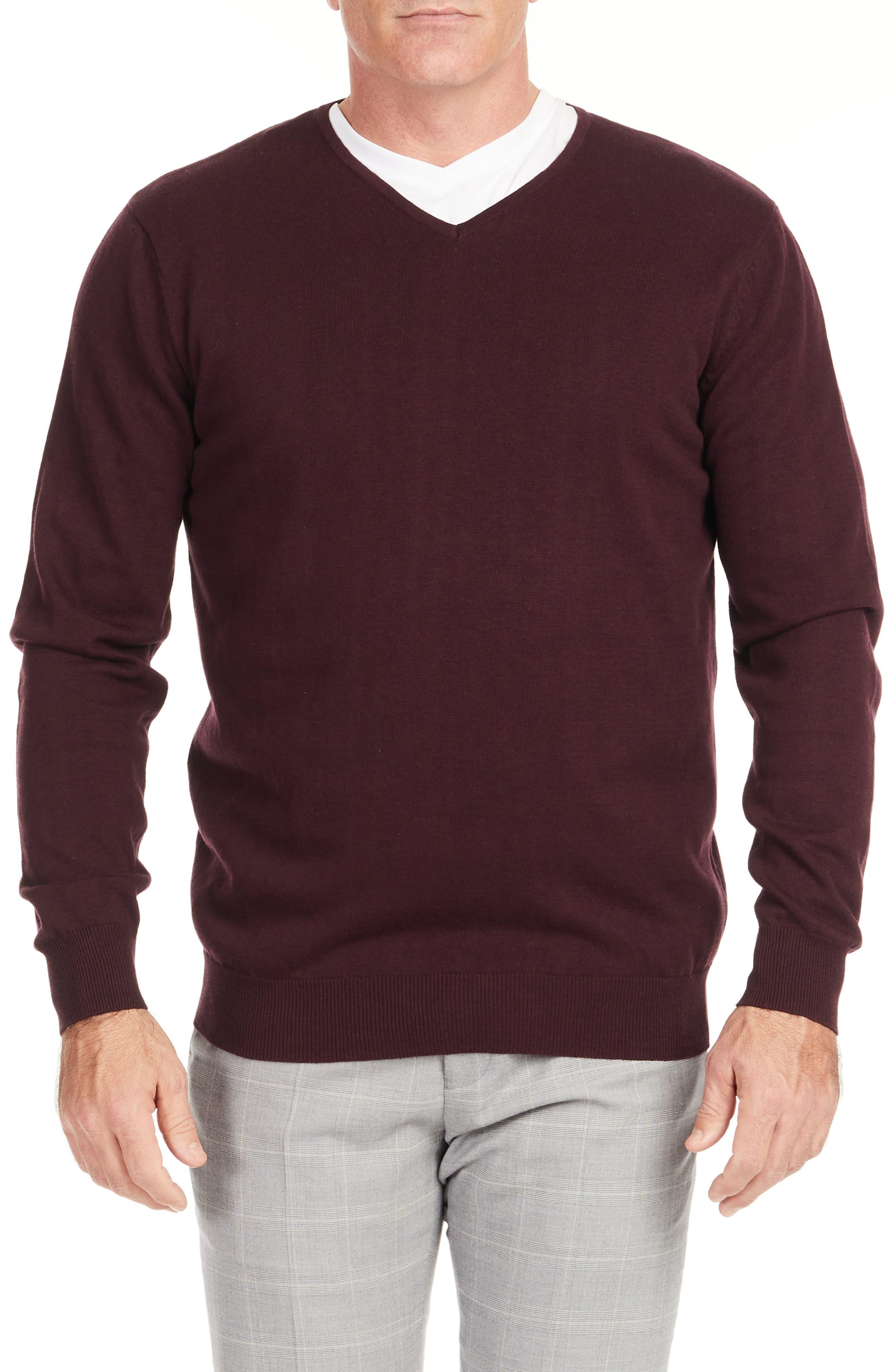 Essential V-Neck Cotton Sweater