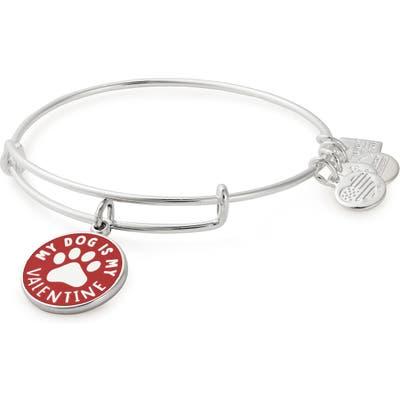 Alex And Ani My Cat Is My Valentine Charm Expandable Bracelet