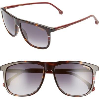 Carrera Eyewear 5m Navigator Sunglasses - Red Gold/ Dark Gray Gradient