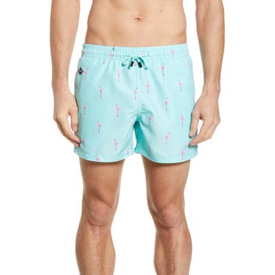 Nikben Flamingo Vice Swim Trunks, Blue