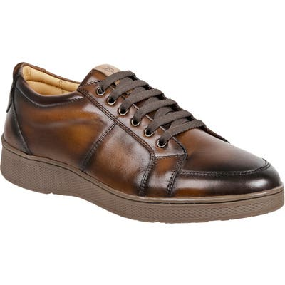 Sandro Moscoloni Wes Sneaker, Brown