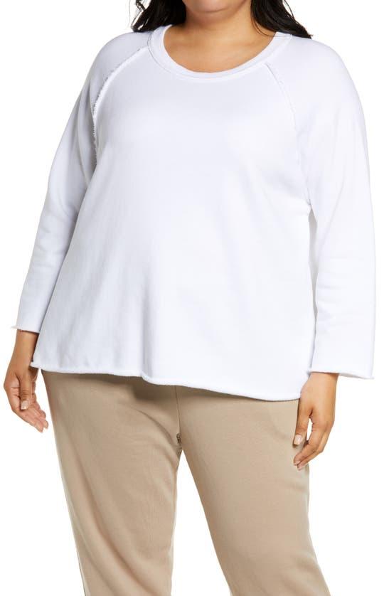 Eileen Fisher Cottons BOXY RAGLAN SWEATSHIRT