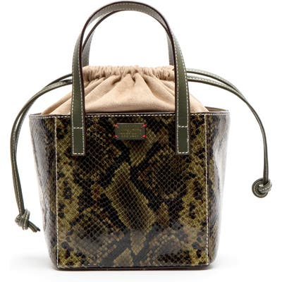 Frances Valentine Moxy Snake Embossed Leather Tote - Green