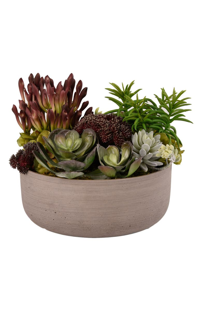 Bloomr Desert Dunes Succulent Arrangement Planter Decoration