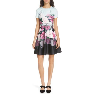Ted Baker London Wilmana Magnificent Skater Dress